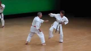 Download Bunkai Gojushiho, Shorin Ryu, Guibert Didier Video