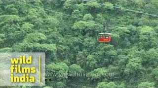 Download Ropeway towards mountain top: Himachal Pradesh Video