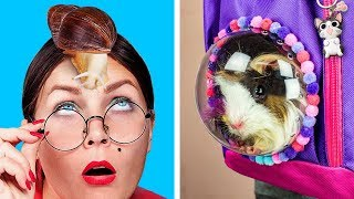 Download How To Sneak Pets Into Class / 8 Funny Pet Pranks And Hacks Video
