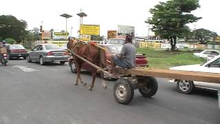 Download Georgetown Guyana, 2 to 6 January 2012 Video