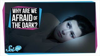 Download Why Are We Afraid of the Dark? Video