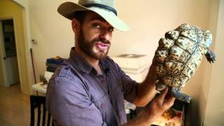 Download Best Advice for Sick Tortoise : Kamp Kenan S1 Episode 18 Video