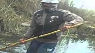 Download الصيد بالكهرباء في المطرية Video