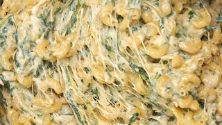 Download Spinach Artichoke Mac & Cheese Video