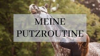 Download Meine Putzroutine: Minimalismus durch und durch Video
