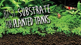 Download Fluval Stratum | Substrate for Planted Aquariums Video