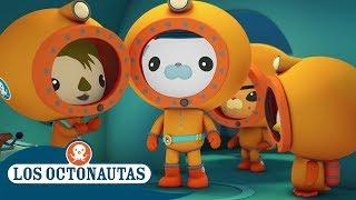 Download Los Octonautas Oficial en Español - Montando en peces vela Video
