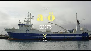 Download Sustainable Food | The A-Ö of Iceland | TASTE Video