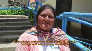 Download Experiencias de Salud Materna Intercultural Salvan Vidas en los Andes Peruanos Video