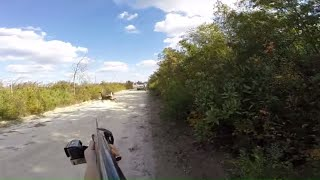 Download Deer hunting with dogs (kill shot) 11-1-14 Video