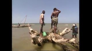 Download Fishing Adventures in Kenya Documentary Video