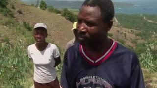 Download Planting Trees Restores Soil in Haiti Video