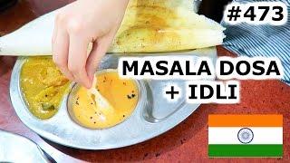 Download HAVING MASALA DOSA AND IDLI | KOCHI DAY 473 | INDIA | TRAVEL VLOG IV Video