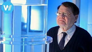 Download Water Memory (Documentary of 2014 about Nobel Prize laureate Luc Montagnier) Video