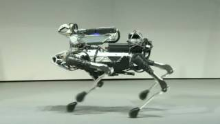 Download 【SoftBank World 2017】 Boston Dynamics / Marc Raibert (English) Video