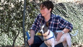 Download Veterans find support in rescue dog companions Video