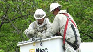 Download Barehanding Transmission Lines Video