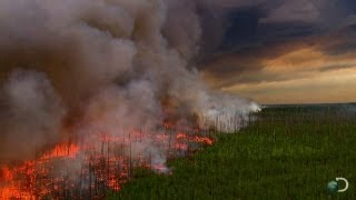 Download Filming a Raging Forest Fire | North America Video