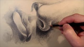 Download Torso, How to Draw Mouth and Nose, Time Lapse Video