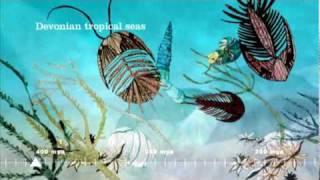 Download The English Riviera Geopark Film Video