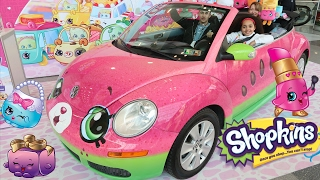Download My Orbeez Golden Award! Shopkins Cutie Cars - New York City Toy Fair | Toys AndMe Video