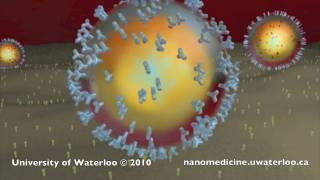 Download Nanotechnology for Targeted Cancer Therapy Video