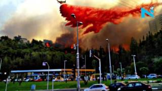 Download Israel burning, thousands flee as wildfire hit Haifa Video