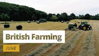 Download British Farming | 12 Months On A UK Farm: June Video