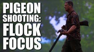 Download Pigeon Shooting: Flock Focus Video