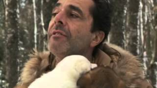 Download Nicolas et ses p'tits chiens Video