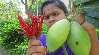 Download Fresh MANGO With RED CHILLI Recipe | VILLAGE STYLE FOOD Video