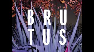 Download Brutus @ Synergie Meeting # 3, by Jan Vervaeke Video