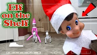 Download Purple & Pink Elf on the Shelf - Caught Moving on Real Camera with Red Elf! Day 19 Video