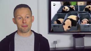 Download The Sassy Scoop: Panda Bedtime (Viral Video Review) Video