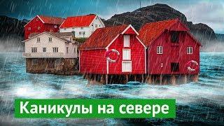 Download Норвегия: климат – хуже, жизнь – лучше Video
