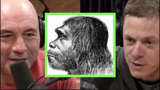 Download Joe Rogan & Steve Rinella on Neanderthals Video