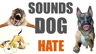 Download 5 Sounds Dogs Hate All Time | HQ Video