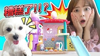 Download 拆玩具史上遇到大慘案?!見習神明之秘密的COCOTAMA! 小伶玩具 | Xiaoling toys Video