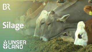 Download Konserviertes Futter: Silage | Unser Land | BR Fernsehen Video