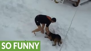 Download Crazy dude works out shirtless in the snow, dog happily joins him Video