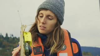 Download UBC Student Profile: Sara Tremblay Boyer Video