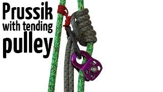 Download Prusik with tending pulley | Arborist climbing techniques Video