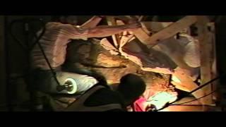 Download Dinosaur 13 - Trailer Video
