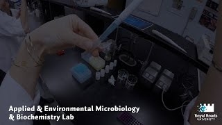 Download Future View: Applied & Environmental Microbiology & Biochemistry Lab Video