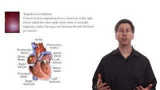 Download What is a normal heart rate? Video