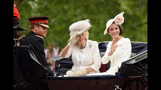 Download Why Prince Harry Doesn't Ride on Horseback During Trooping the Colour ? Video