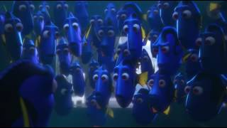 Download Finding Dory - Reunion & Getting Caught Scene Video