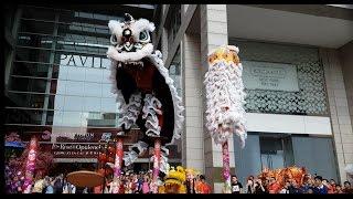 Download CNY2017 ~ Acrobatic Lion Dance (múa lân 高樁舞獅) by @Kun Seng Keng (Muar)Pavilion KL (9/1/2017) 4K UHD Video