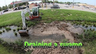 Download Draining A Swamp Video