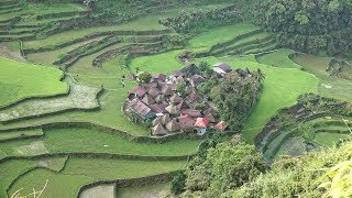 Download Rice Terraces of the Philippine Cordilleras: Batad, Bangaan and Banaue in 4K Ultra HD Video
